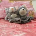 Про організацію оздоровлення та відпочинку дітей влітку 2013 року