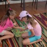 Планується оздоровити 1954 дітей Павлоградського району